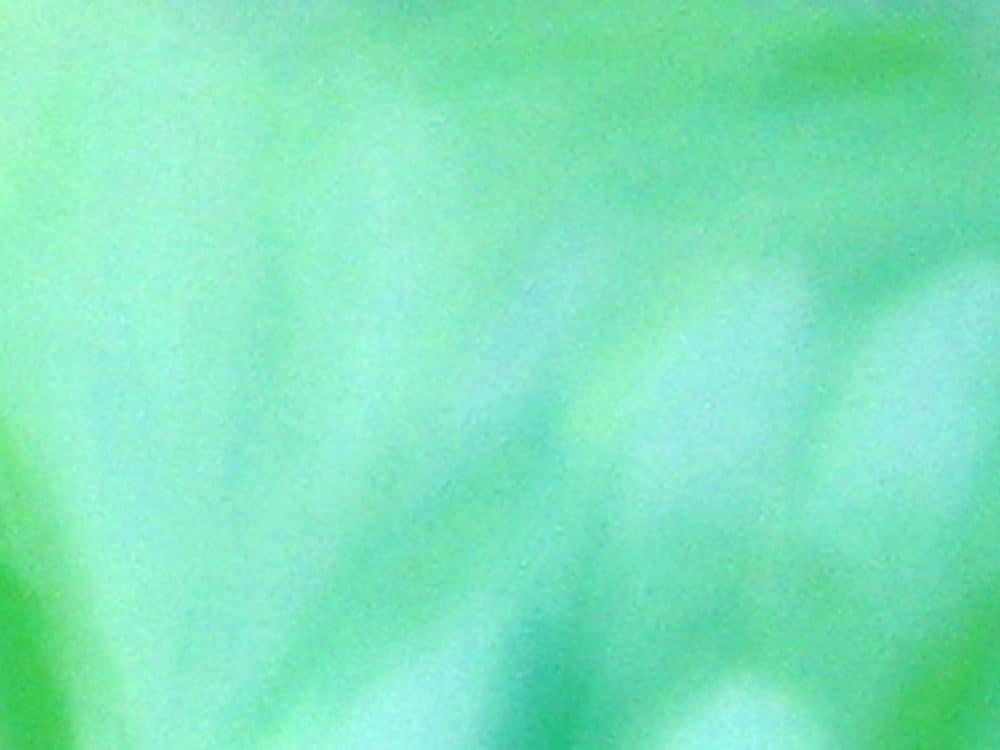 Abstraktes Kunstbild leuchtend Grün